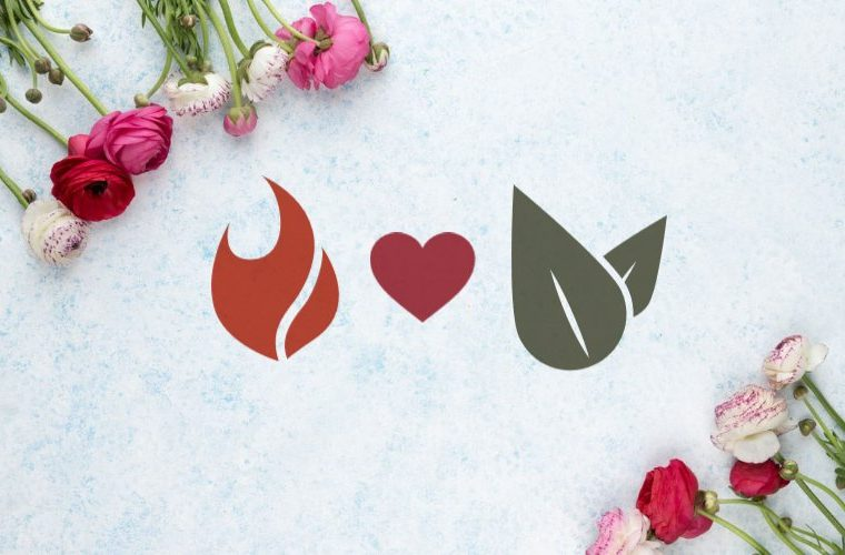 Love compatibility between fire and earth signs