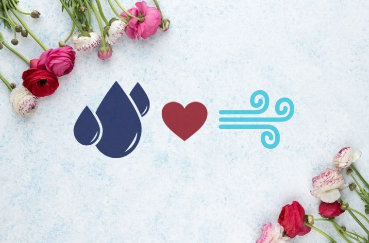 Love compatibility between water and air signs