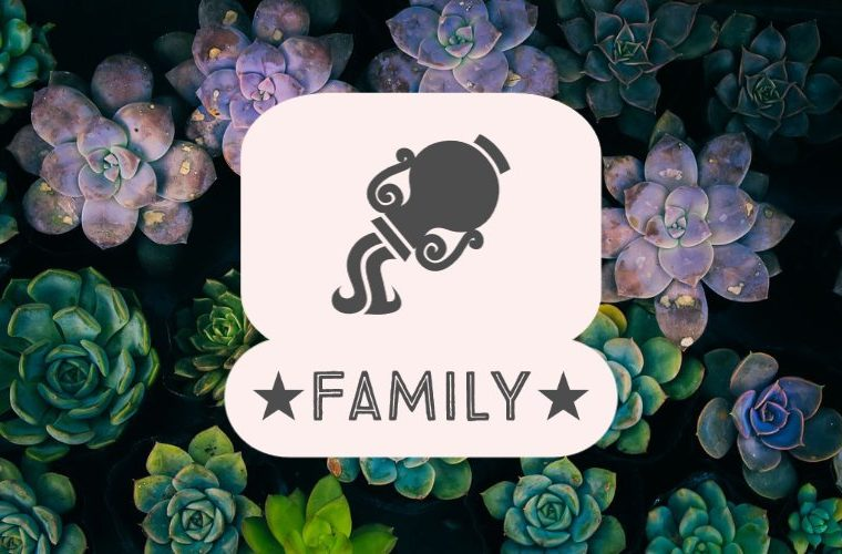 Aquarius Family
