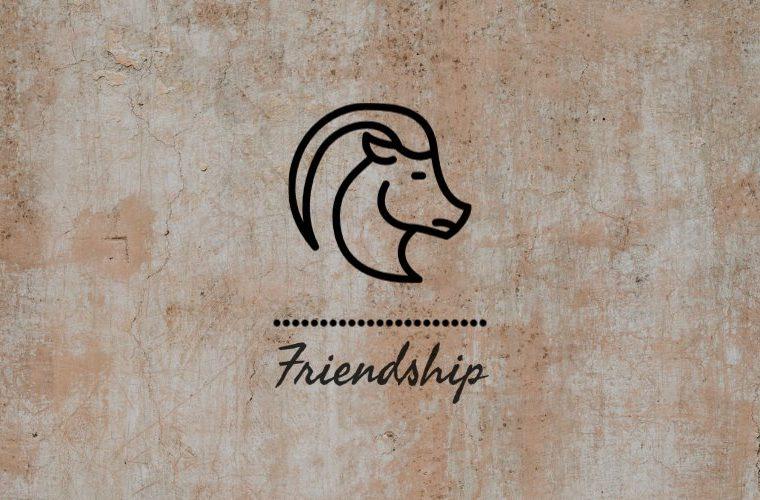Capricorn Friendship