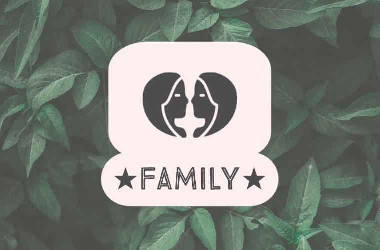Gemini Family