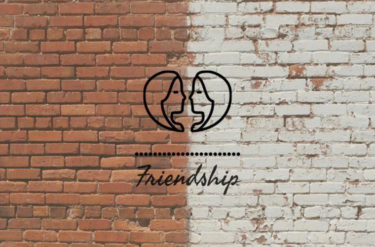 Gemini Friendship