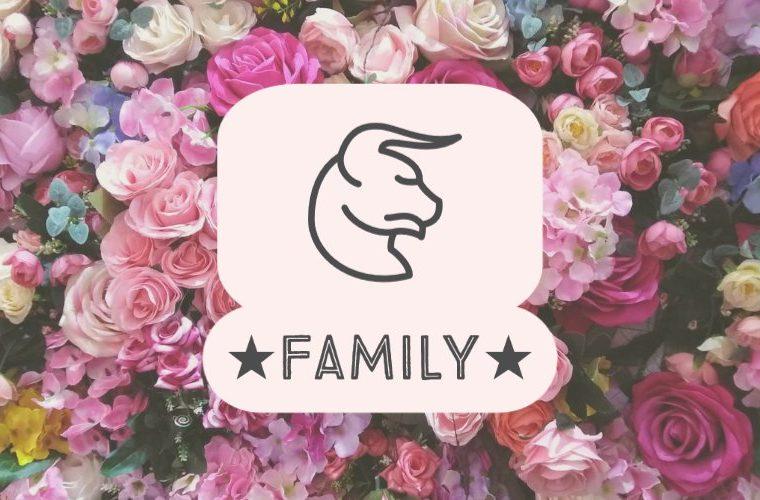 Taurus Family
