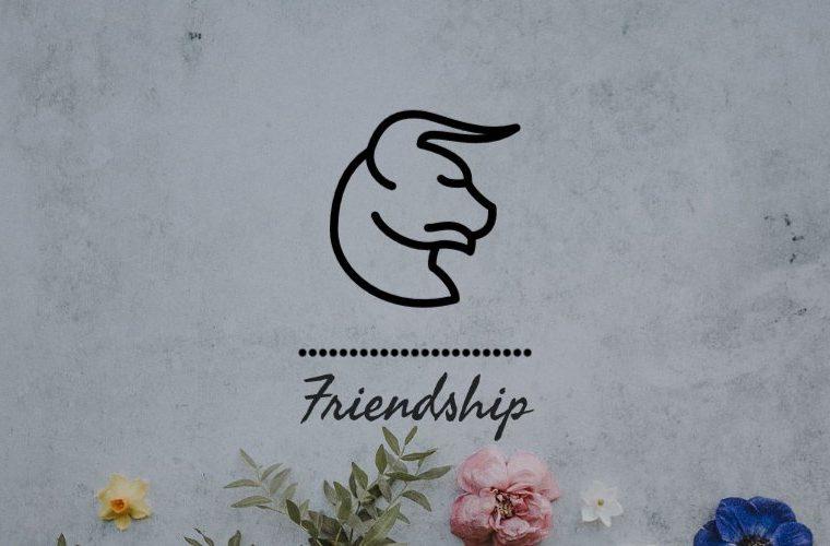 Taurus Friendship