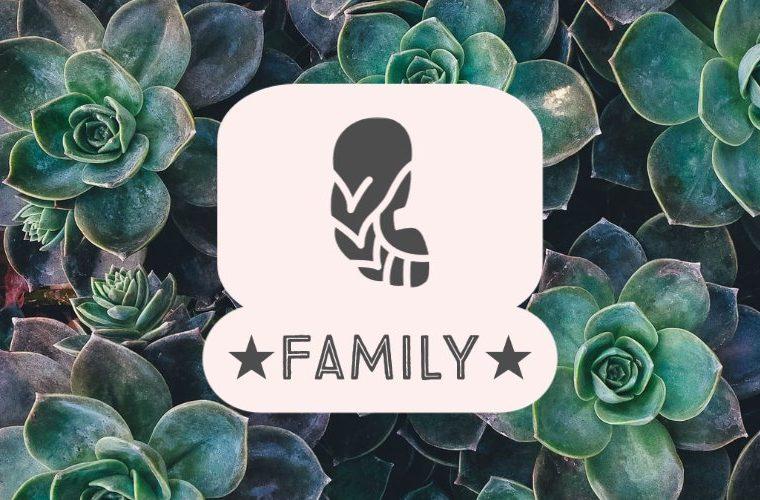 Virgo Family