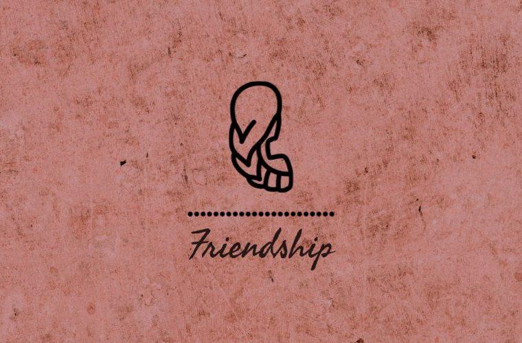 Virgo Friendship